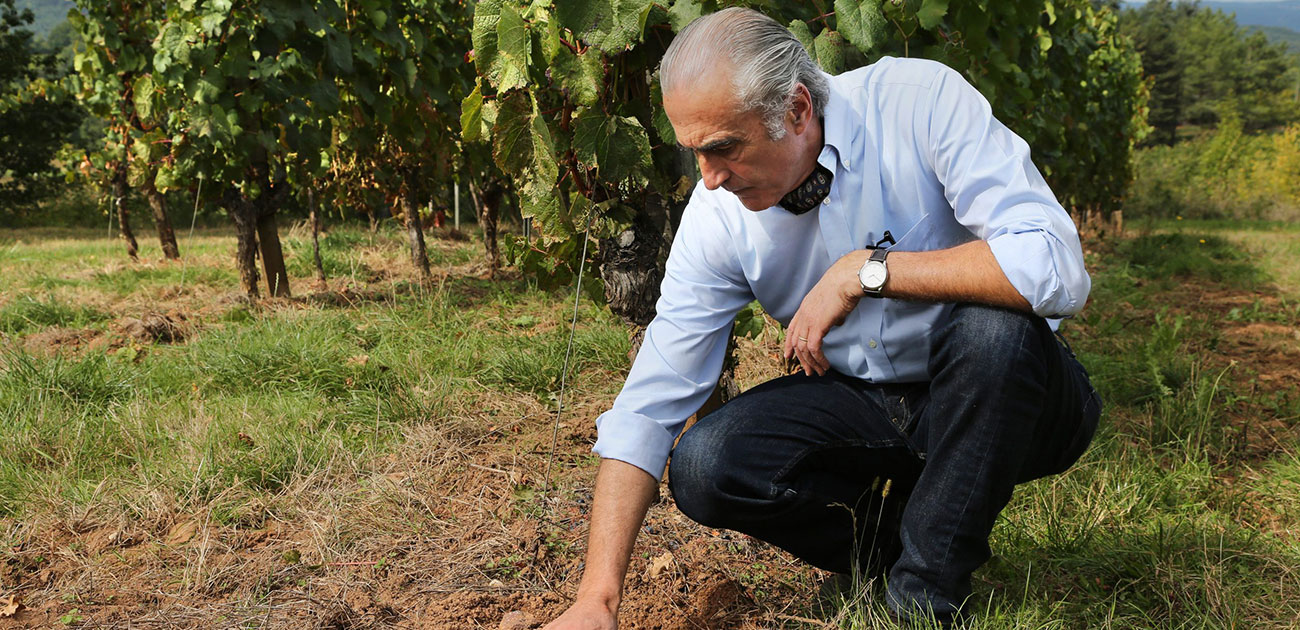 BODEGAS FABRE REPORTS EXCEPTIONAL VINTAGE FROM MENDOZA